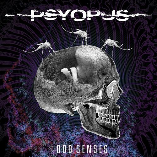 Psyopus Odd Senses